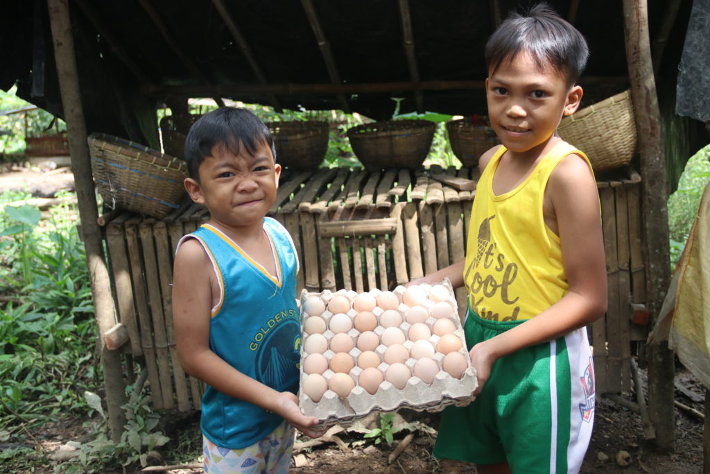 On weekends, World Vision sponsored children Ian, 7 and Ivan, 9, help their mother Flor in taking care of the native chickens. They also help in harvesting eggs.