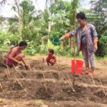 World Vision implements food security project in Samar