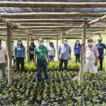 FORWARD PROGRAM: Vegetable seeds distribution for farming families
